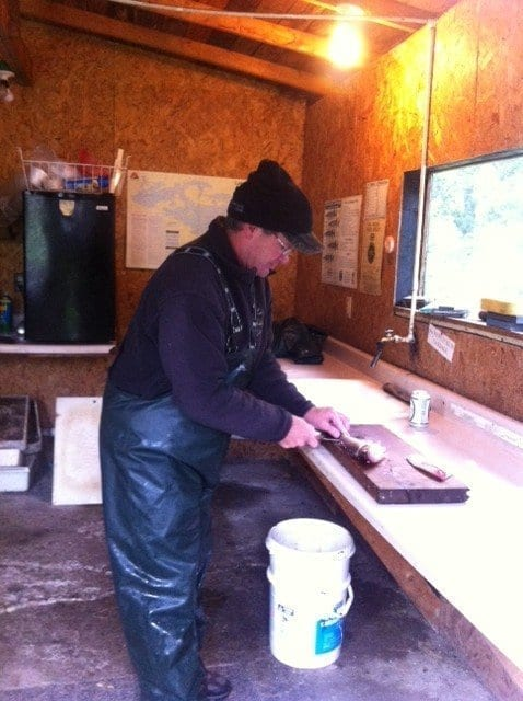 Tim Lescarbeau Lake Vermilion guide cleaning walleyes
