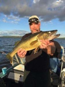 Lake Vermilion walleye 2016