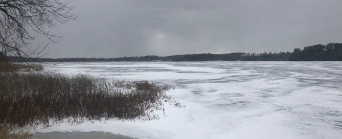 Everett Bay ice